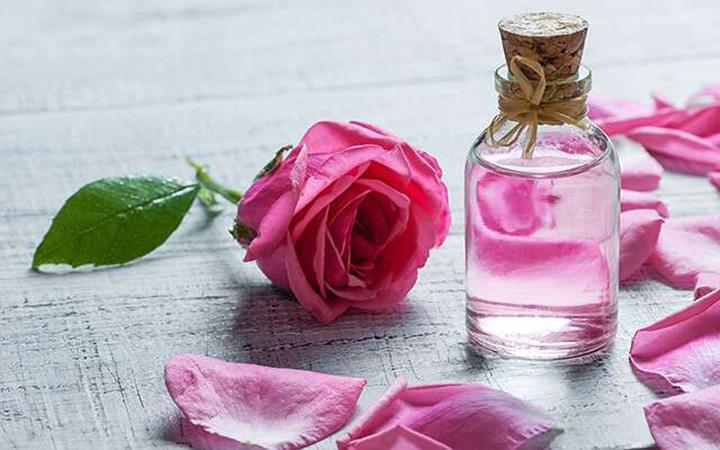 طرق زيادة في حجم الثدي بماء الورد سريعة ومضمونة